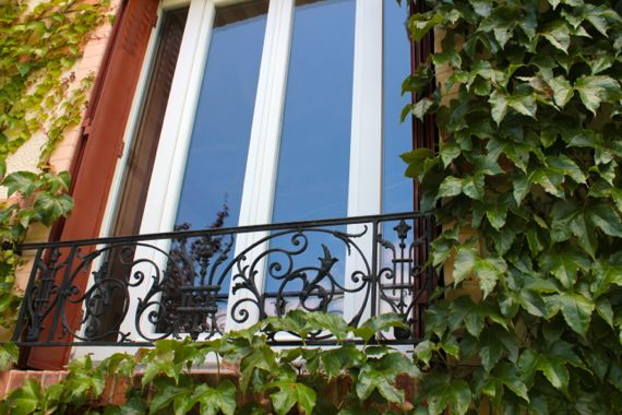 Our living room window with the growing vines and the pretty reflection.
