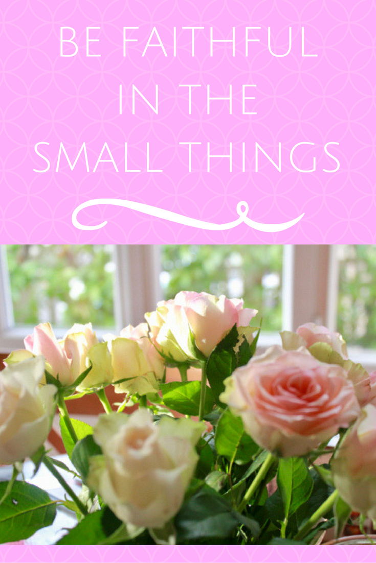 When the big things feel chaotic, there are always the small things.